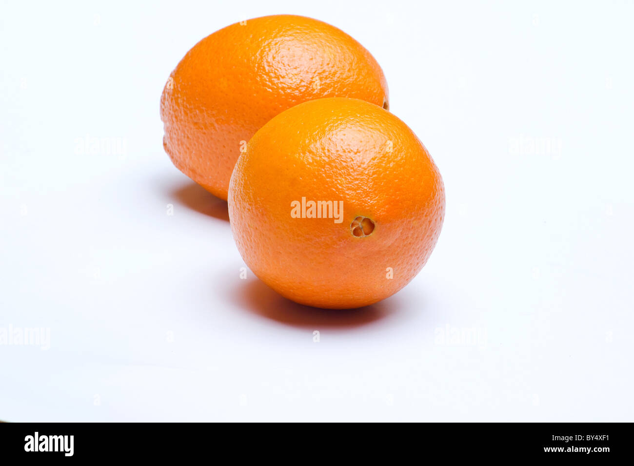 Close-up of two oranges on white background - Stock Image