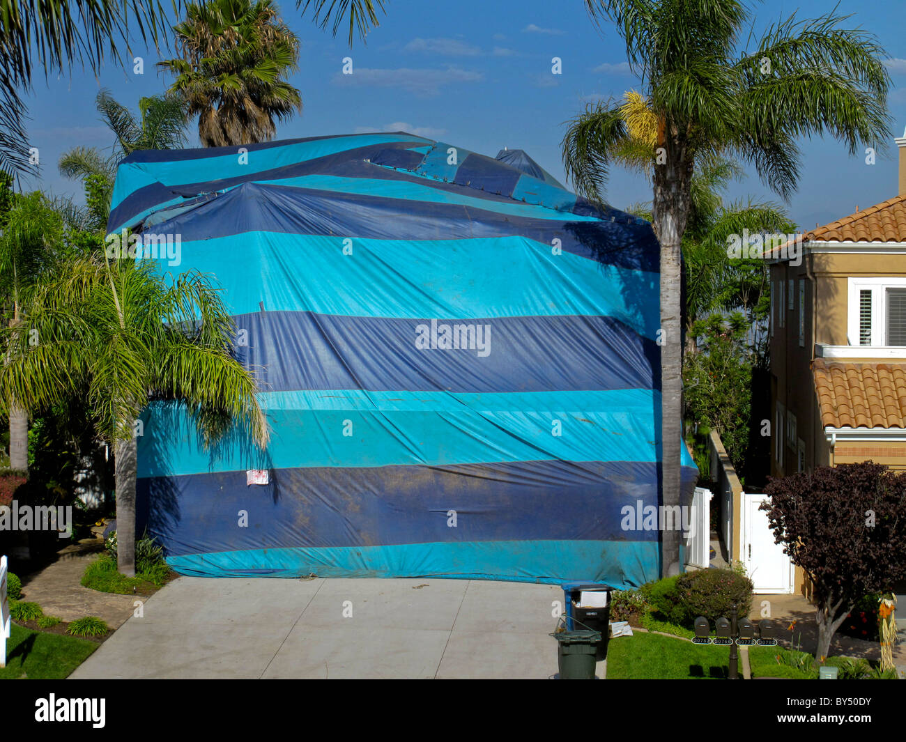 A house in Southern California is wrapped in a gassproof tent and filled with poisonous cyanide gas to kill termite - Stock Image