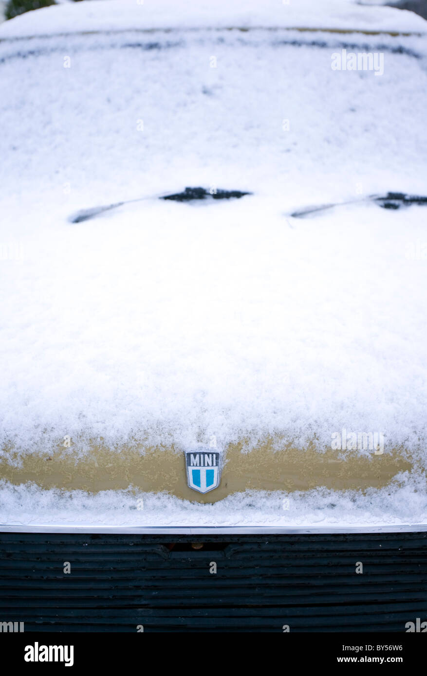 An old mini car covered by snow with its badge showing - Stock Image