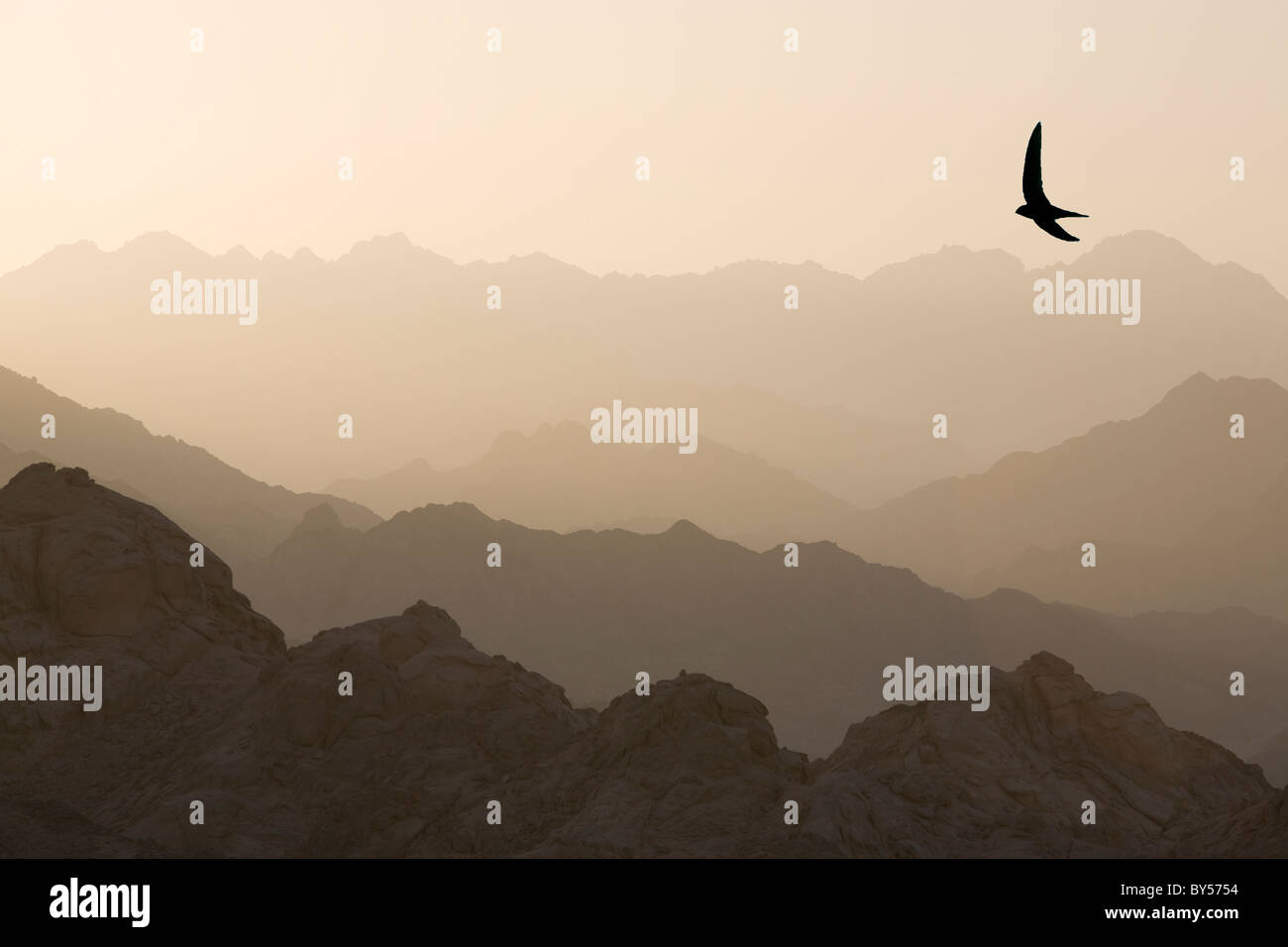 the mountains of the Sinai desert near Dahab in Egypt. - Stock Image