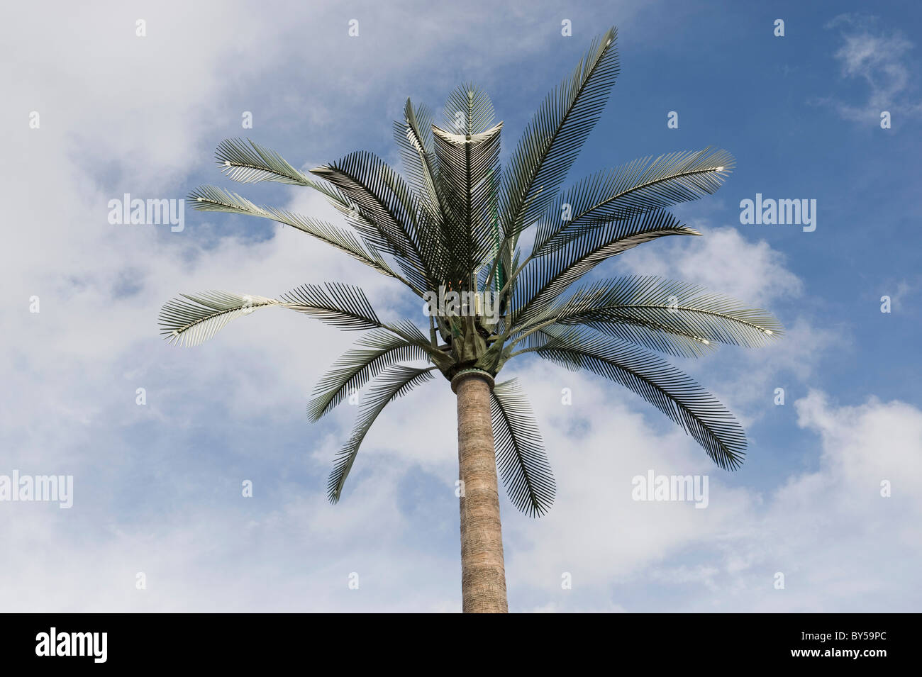 Cellular repeater tower disguised as a palm tree - Stock Image