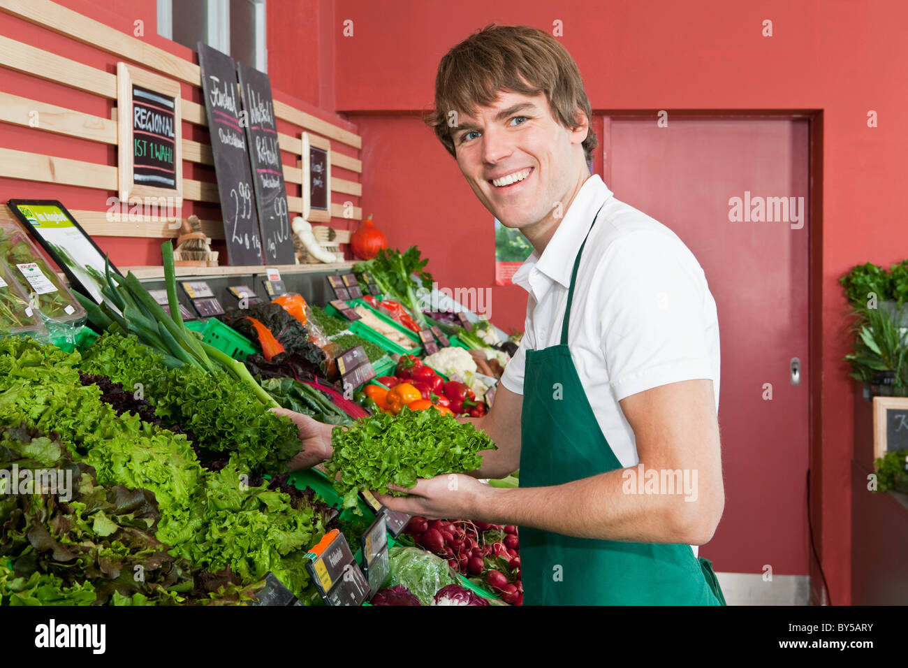 A grocery stocker stocking leaf lettuce - Stock Image