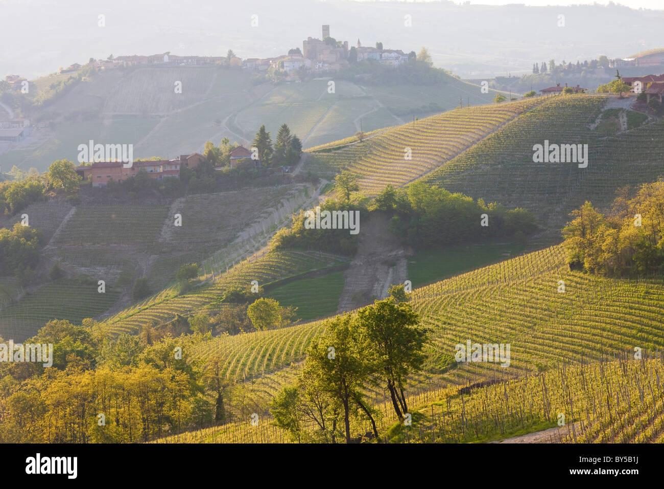 View to Serralunga d' Alba, Piedmont (or Piemonte or Piedmonte), Italy - Stock Image