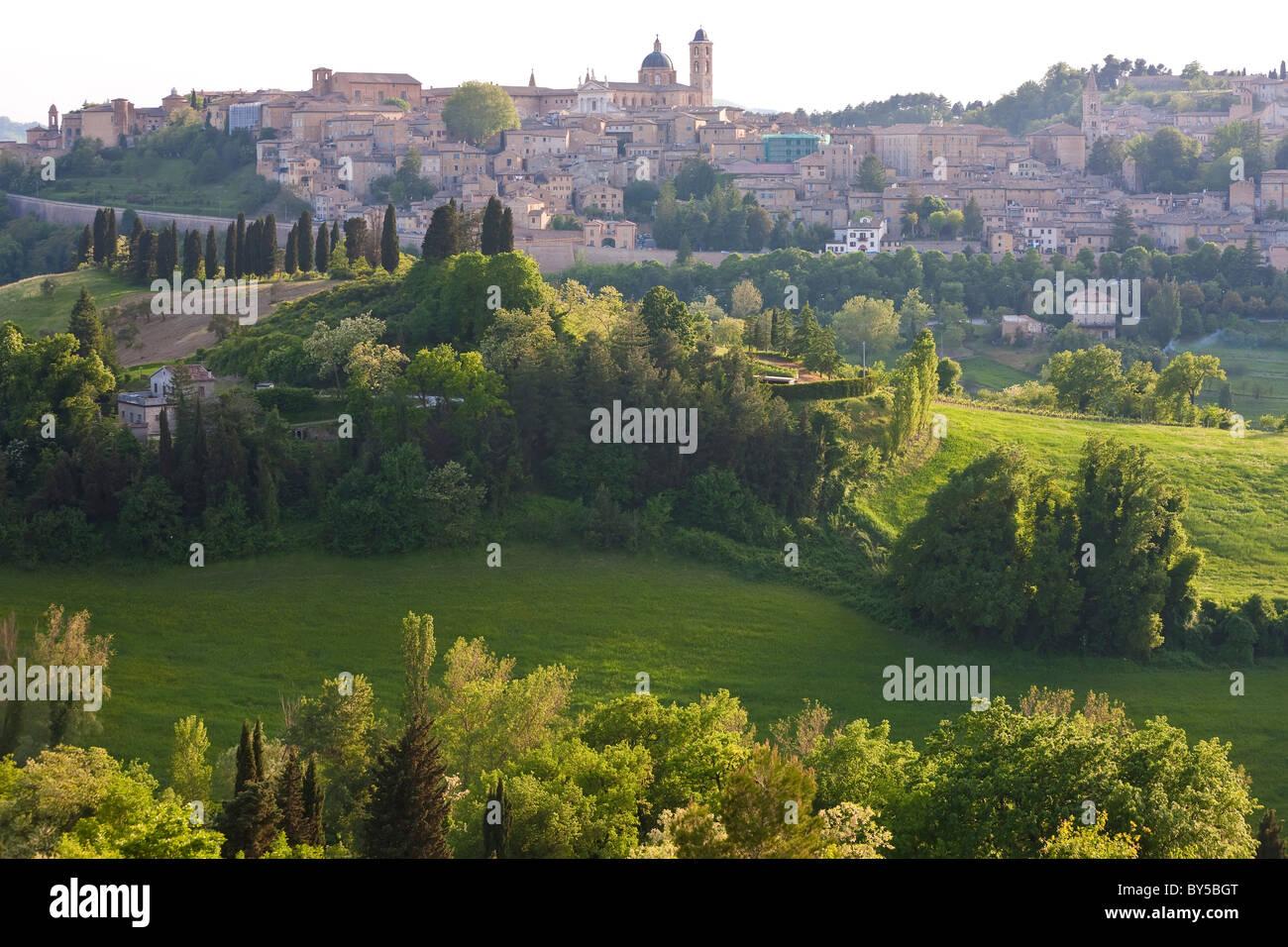 Urbino, Marche, Italy - Stock Image