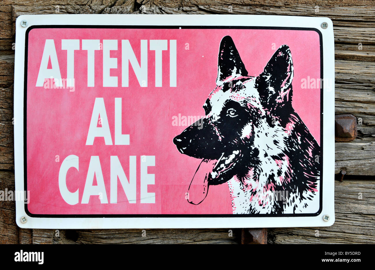 Beware of dog sign in tuscany, italy - Stock Image