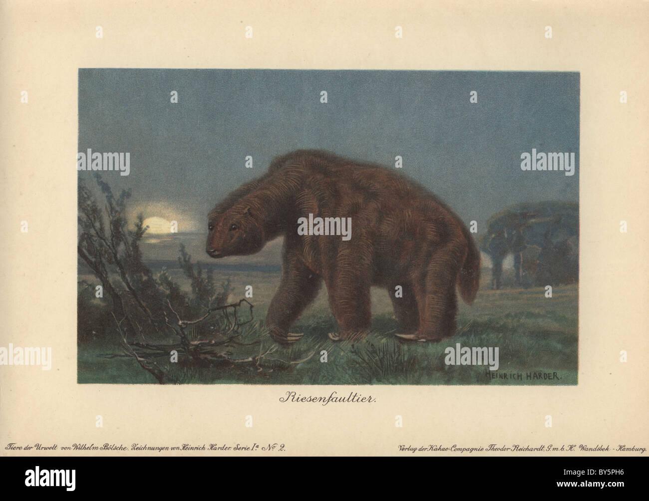 Megatherium americanum (Great Beast) was a genus of elephant-sized ground sloths. - Stock Image