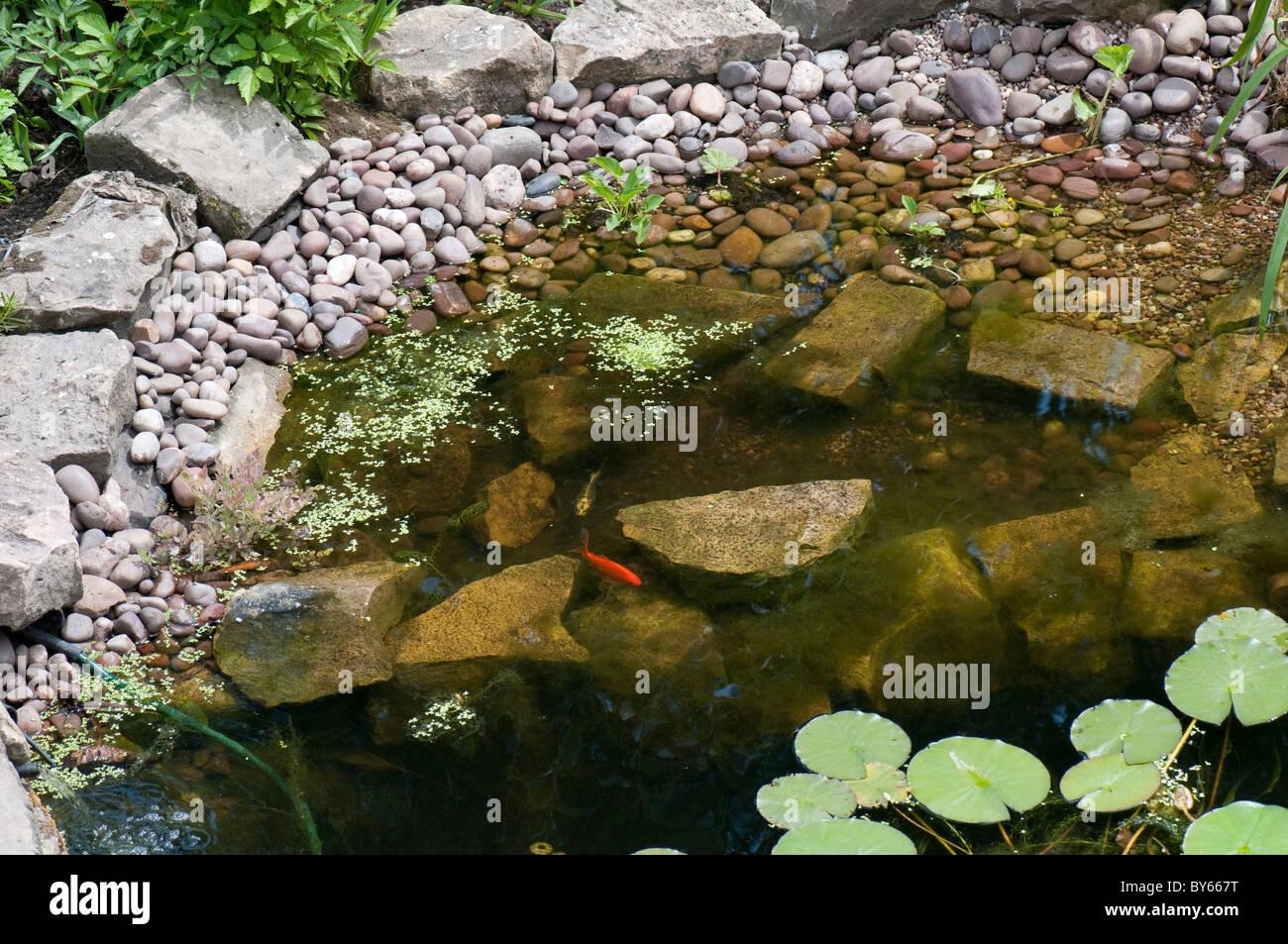 Small Garden Pond Stock Photos & Small Garden Pond Stock Images - Alamy