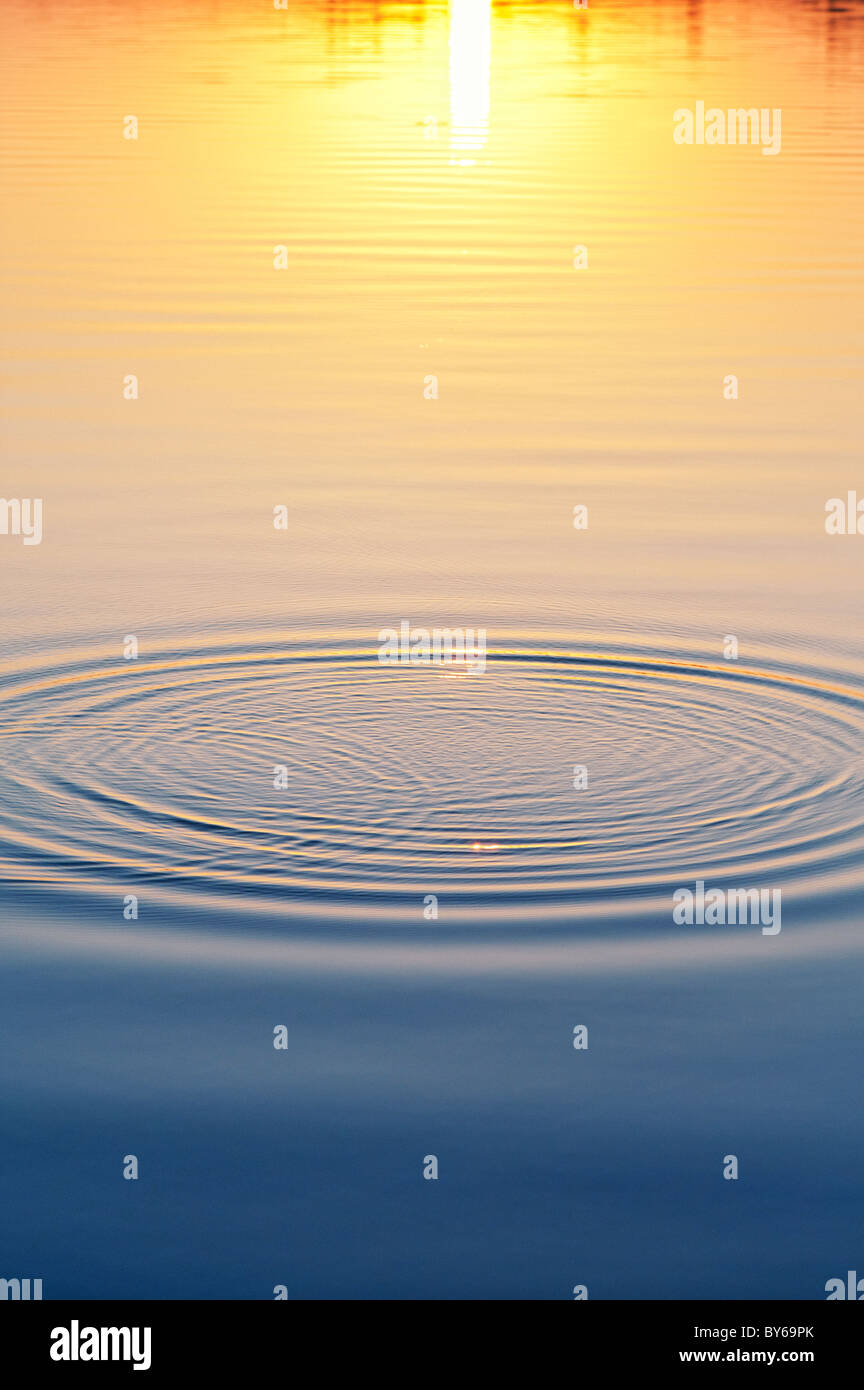 Golden water ripples at sunset on a lake in India - Stock Image