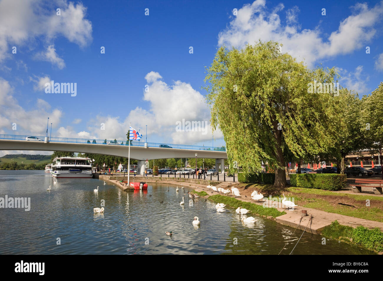 Remich Grand Duchy of Luxembourg Moselle River, swans, national flag and cruise boat by road bridge to Germany on - Stock Image