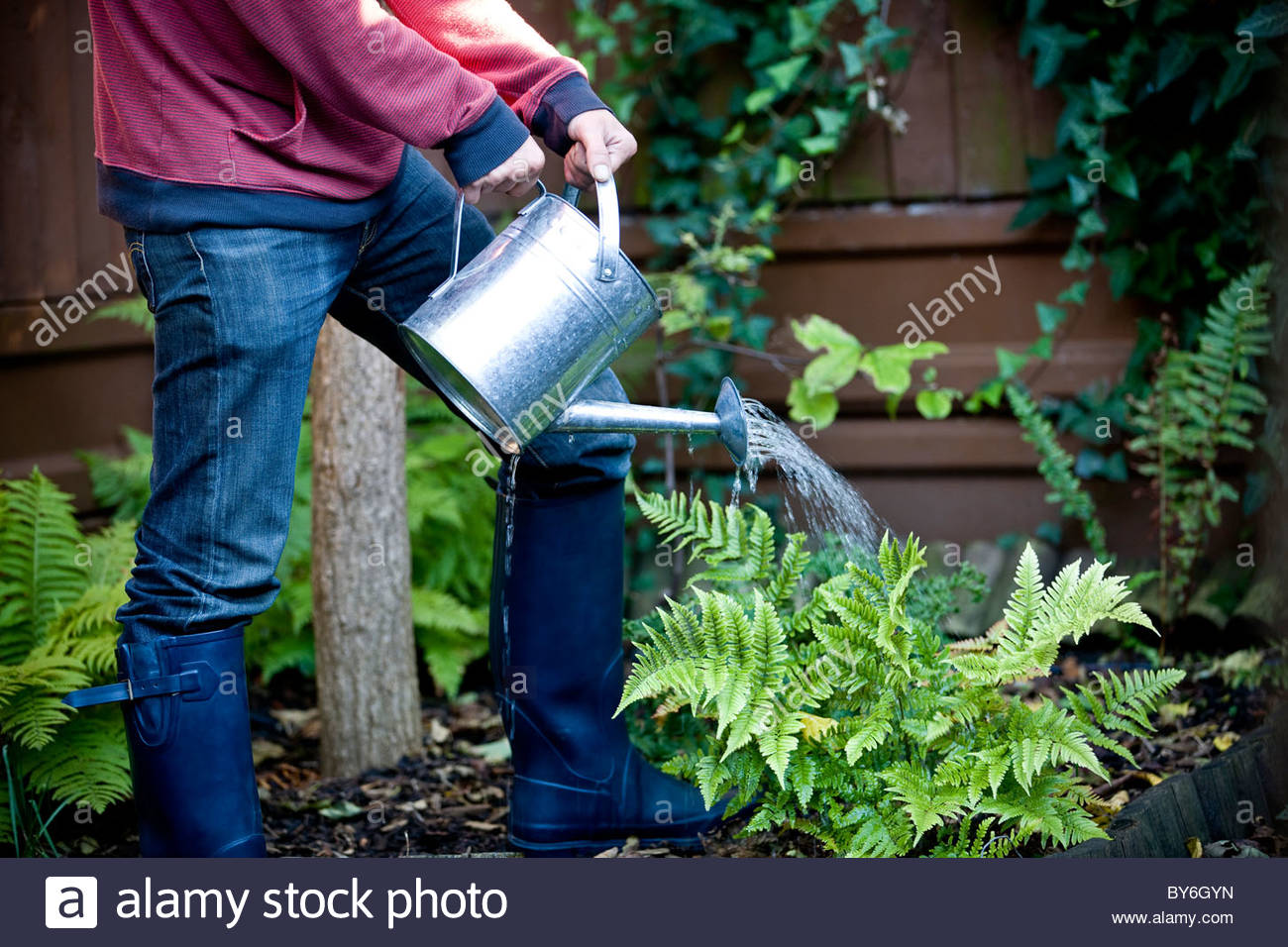 A man watering his garden - Stock Image