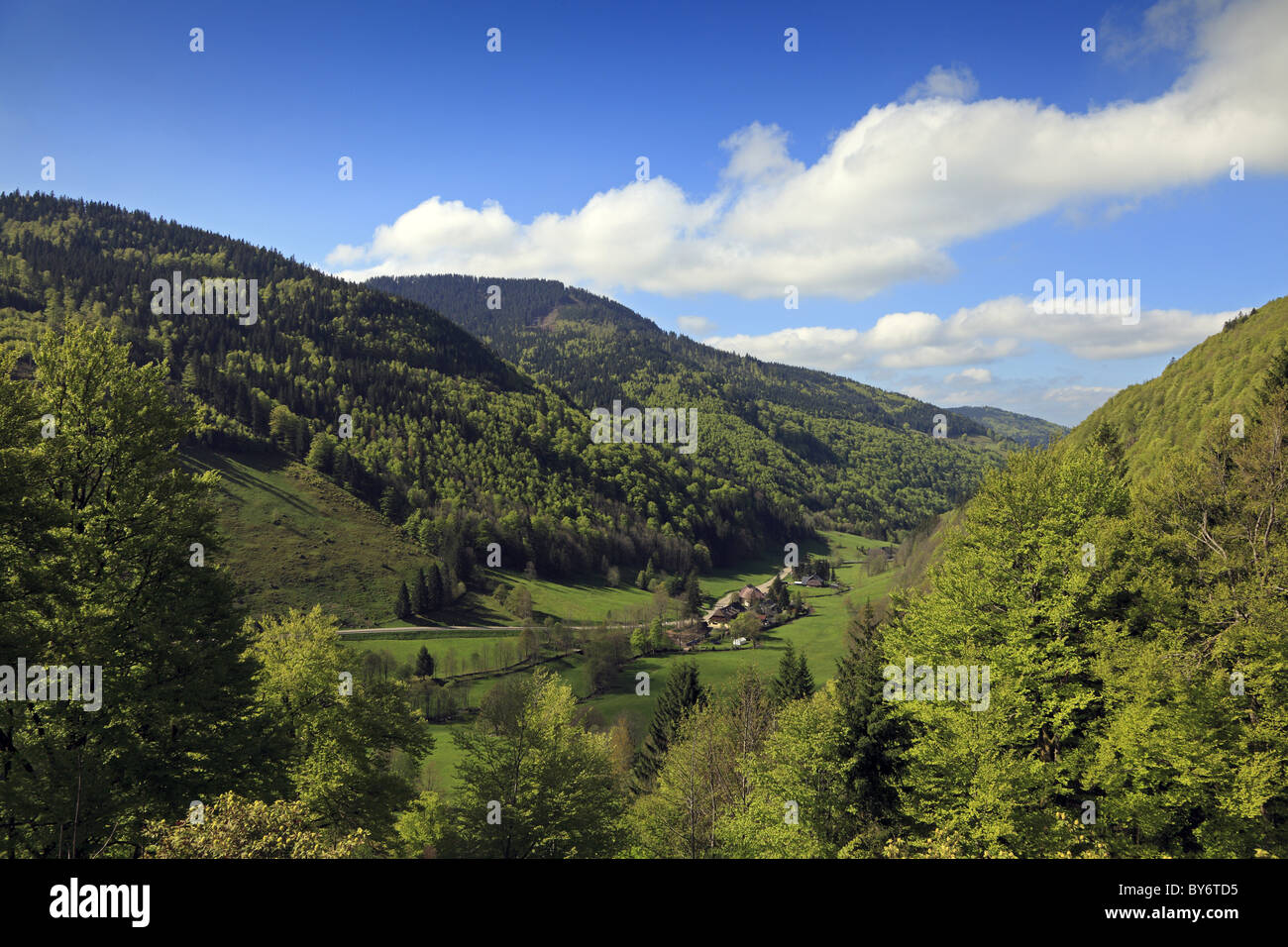 View at Wiese valley under clouded sky, Black Forest, Baden-Wuerttemberg, Germany, Europe - Stock Image