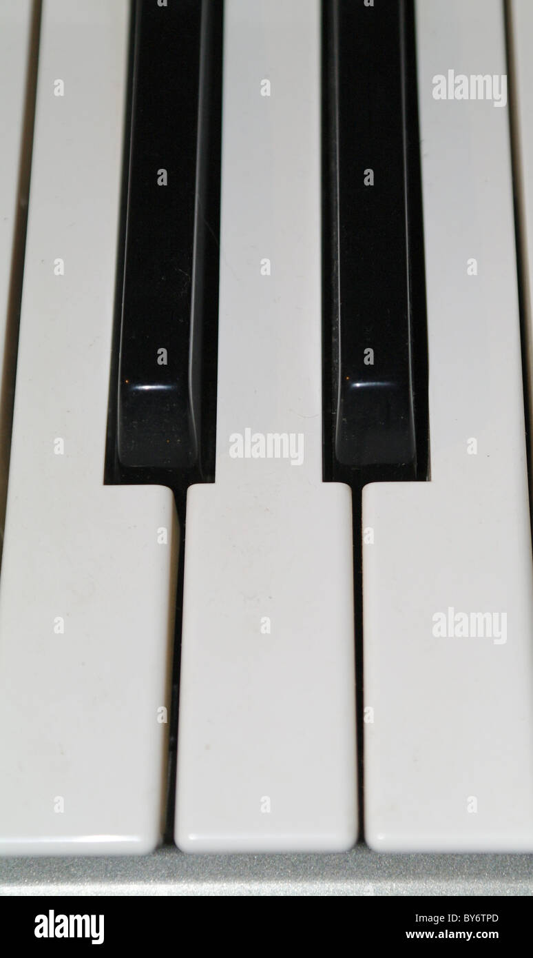 The keyboard synthesizer close up. - Stock Image