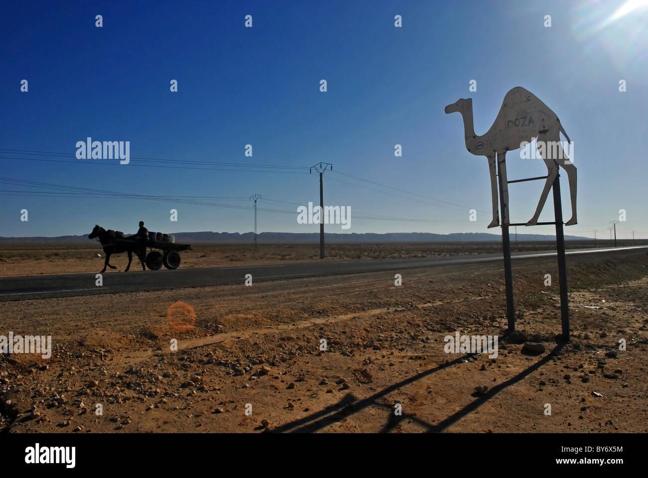 Desert road and camel sign near Douz, Tunisia Stock Photo