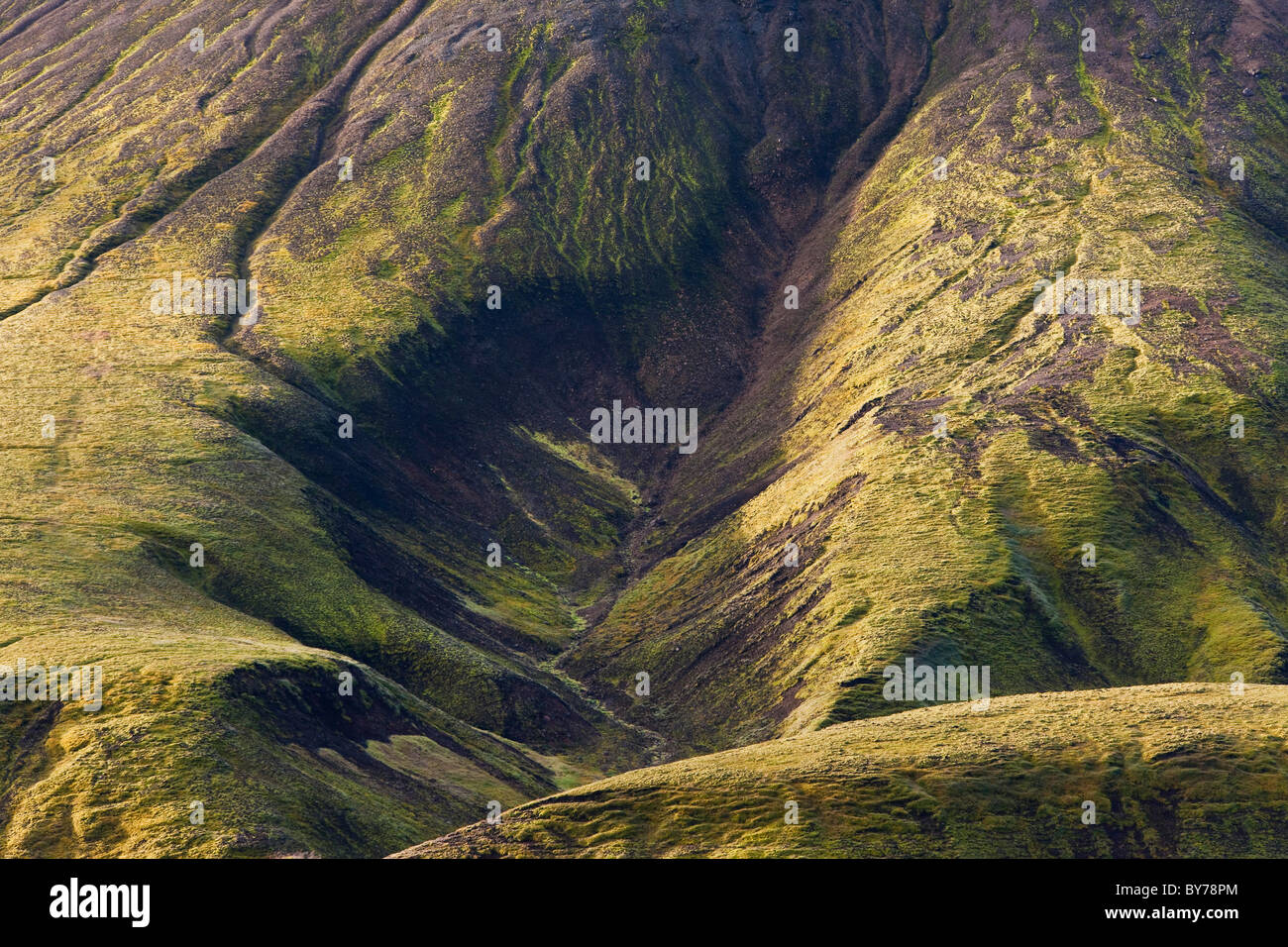 Moss covered mountains, Landmannalaugar, Southern Highlands, Iceland - Stock Image