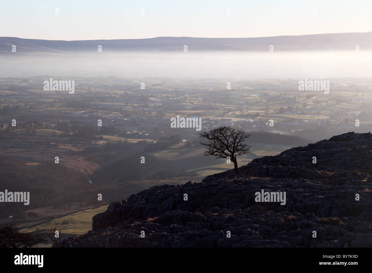 Isolated Tree and Mist Above the Village of Ingleton Viewed from Twistleton Scar Yorkshire Dales UK - Stock Image
