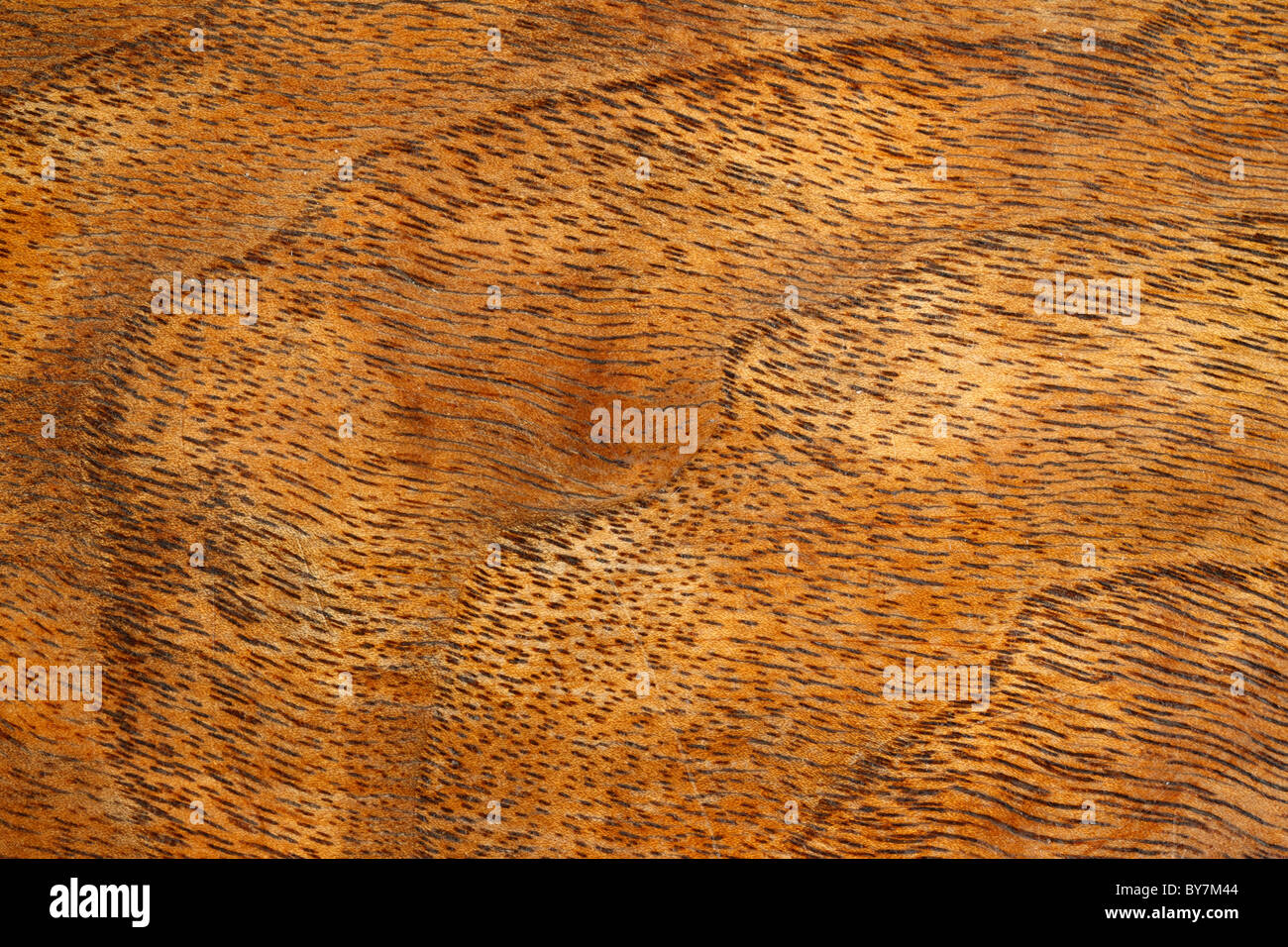 close up detail of antique table top showing wood grain detail stock