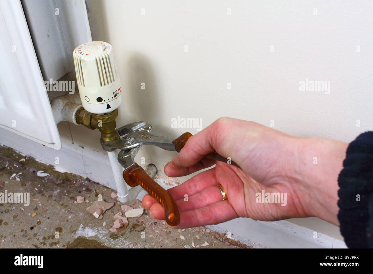 DIY plumber repairing a leaky radiator pipe, UK - Stock Image