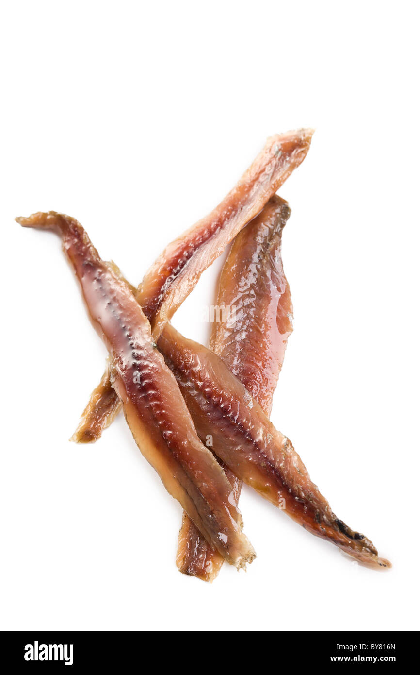 anchovies fillets on white background - Stock Image