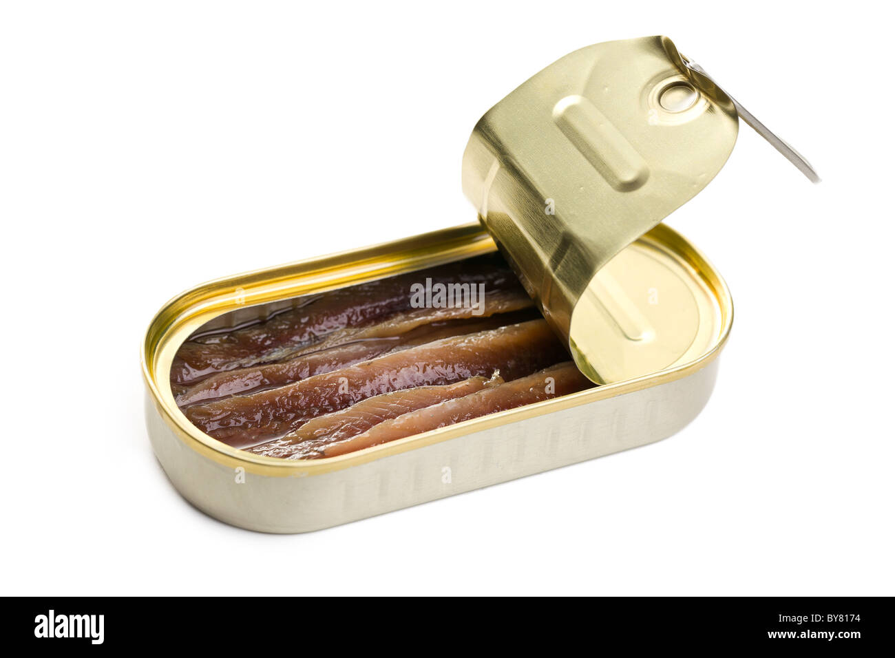 the anchovies fillets in tin can - Stock Image