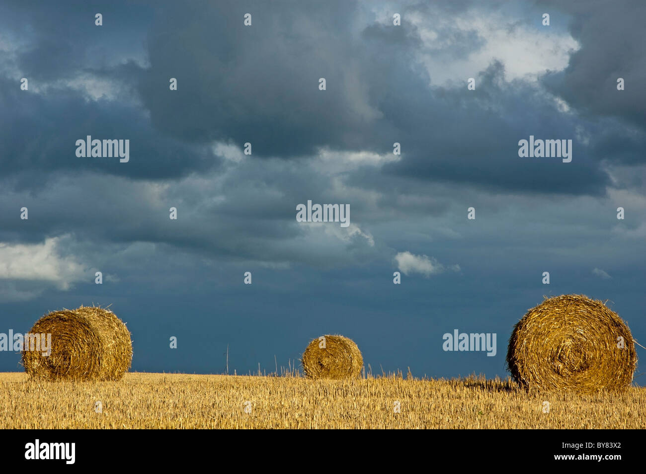 Hay bales in harvested field with stormy sky - Stock Image