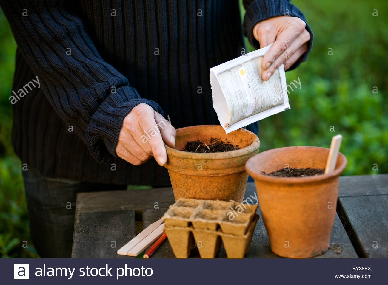A man planting seeds in a pot - Stock Image