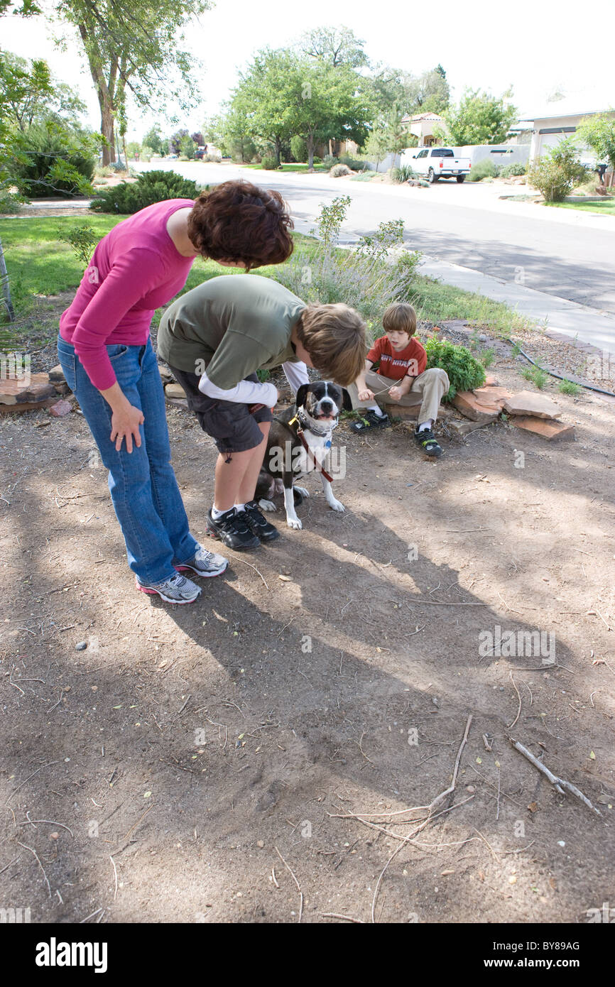 Animal trainer instructs eleven year old child to pat and reward dog for good behavior. - Stock Image