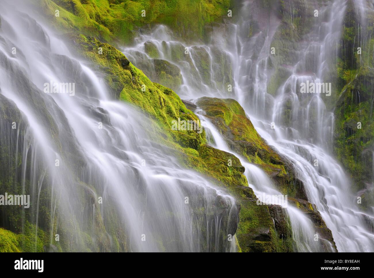 Close up of Proxy Falls. Three Sisters Wilderness, Oregon Stock Photo