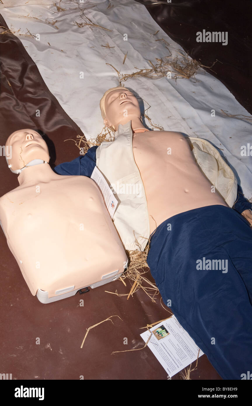 Dummies ready for learning and practising first aid in the Uk - Stock Image