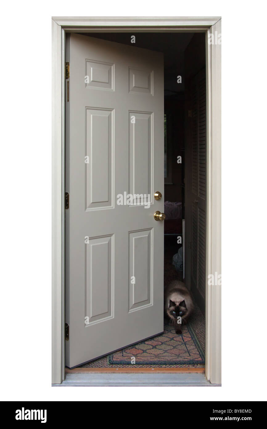 An open door with a cat walking out. - Stock Image