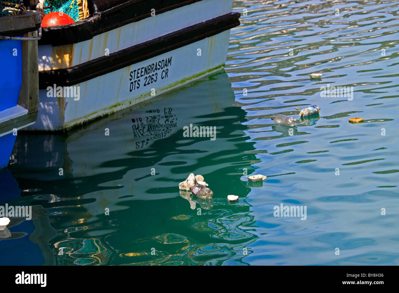 Litter floating on the water in Hout Bay Harbour. Stock Photo