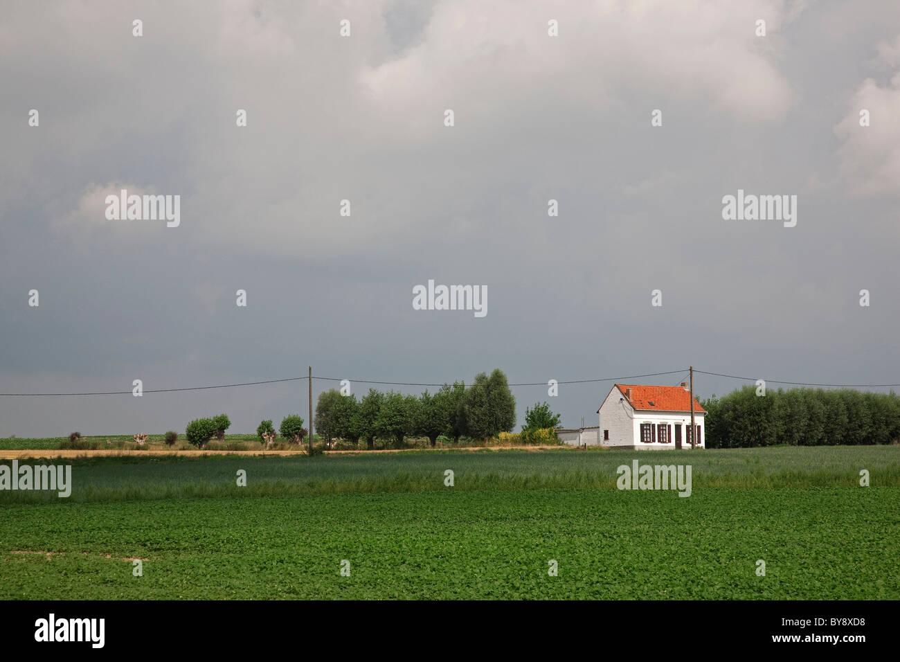 Working-class / labourer's cottage in the Leie region at Sint-Denijs / Kooigem, Flanders, Belgium - Stock Image