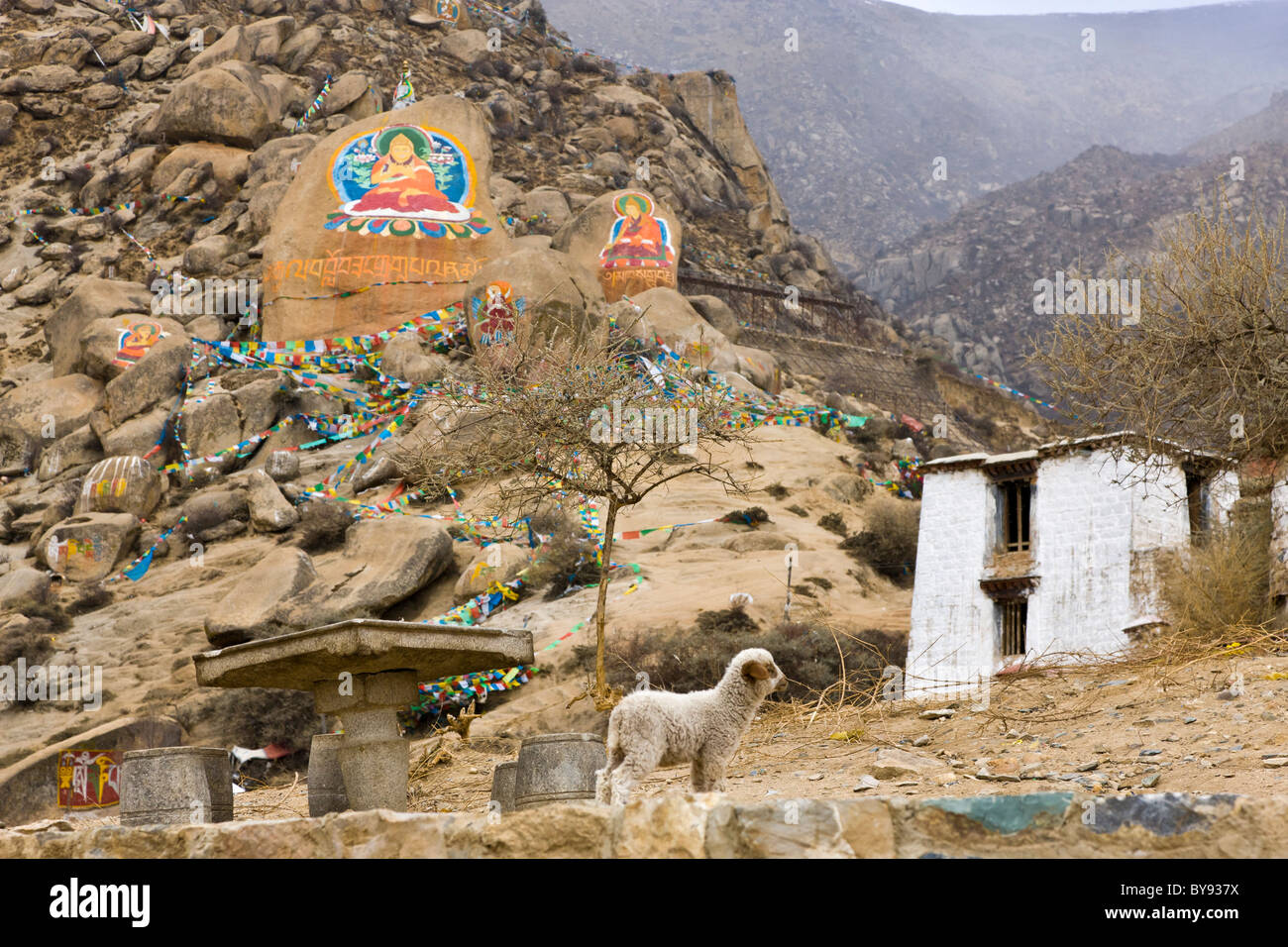 Rock paintings of Buddha and lamb at Drepung Monastery, Lhasa, Tibet. JMH4515 - Stock Image