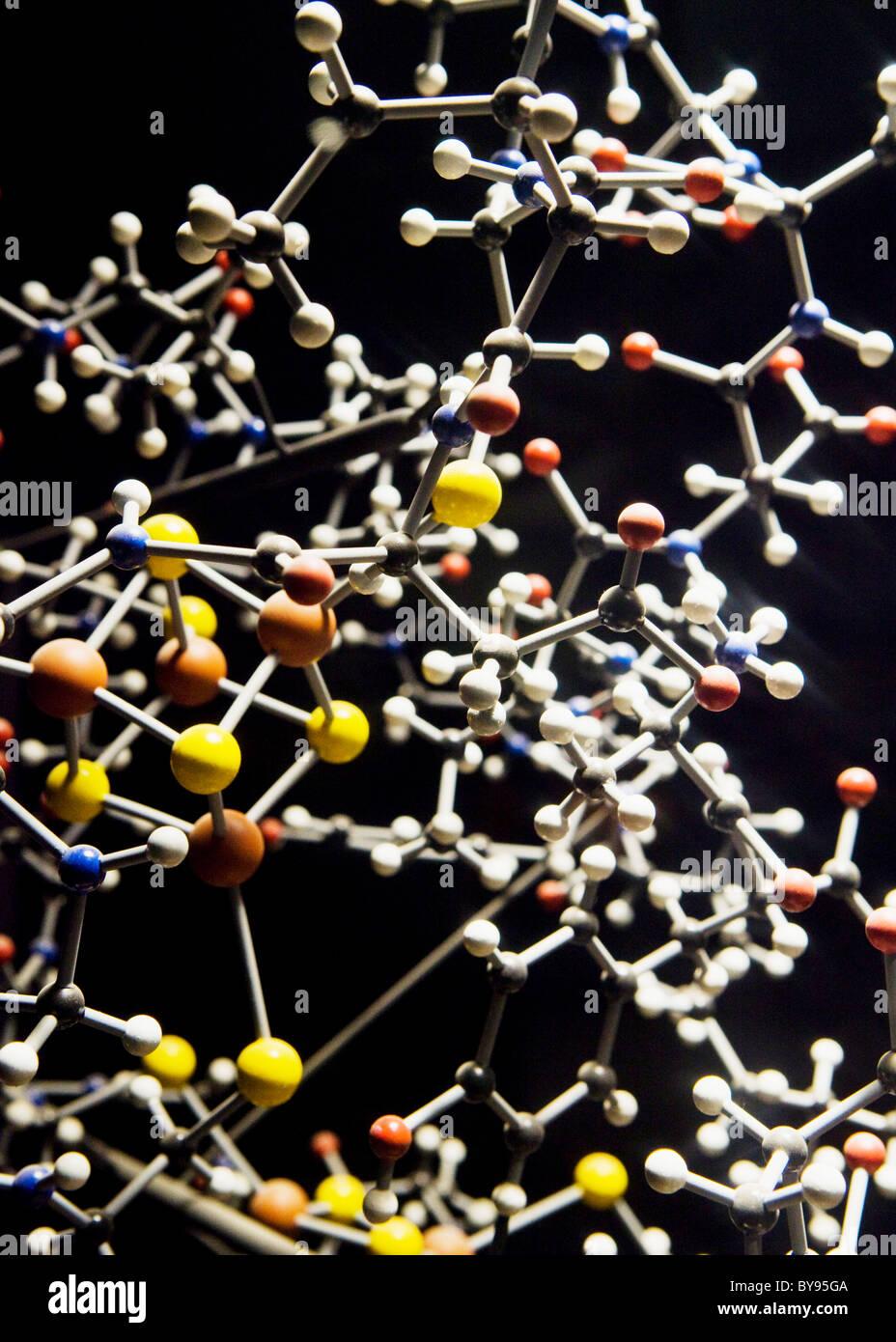 Protein molecule model - Stock Image