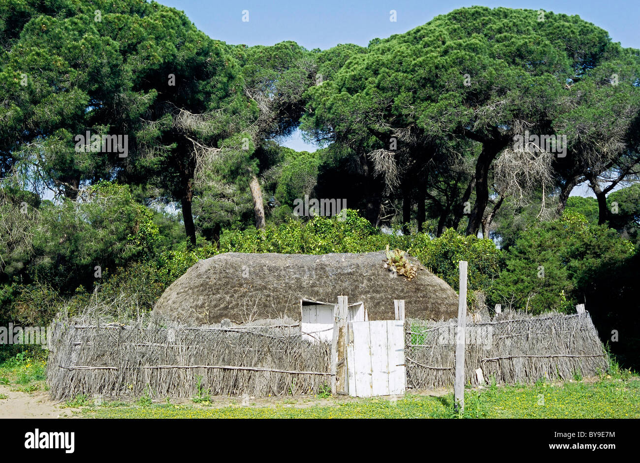 Primitive hut in the nature park of Coto de Doñana, reconstruction of a typical village of the Marisma, Guadalquivir - Stock Image