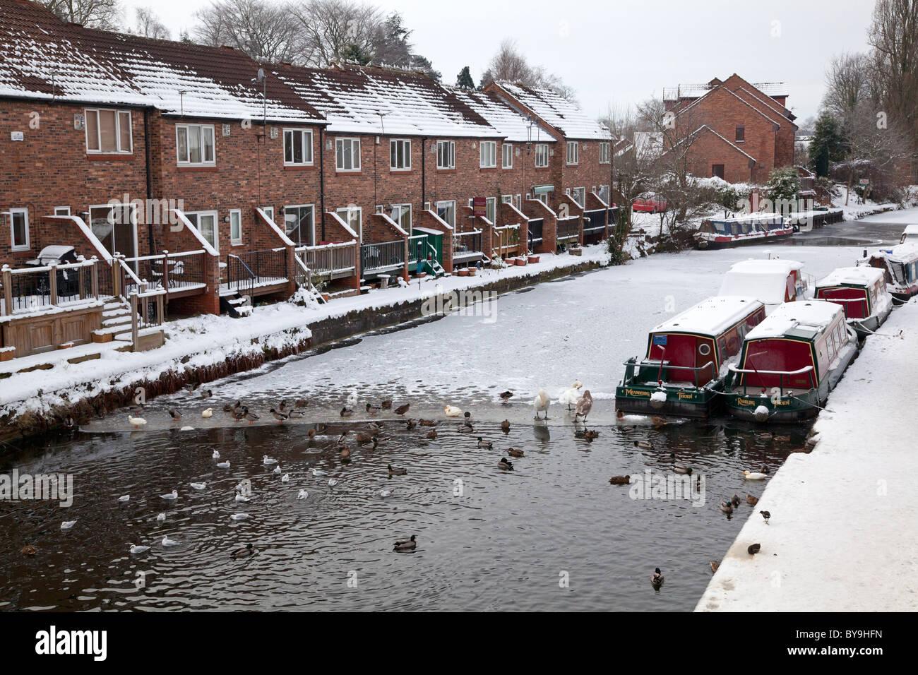 The frozen Bridgewater Canal at Stockton Heath, Cheshire - Stock Image