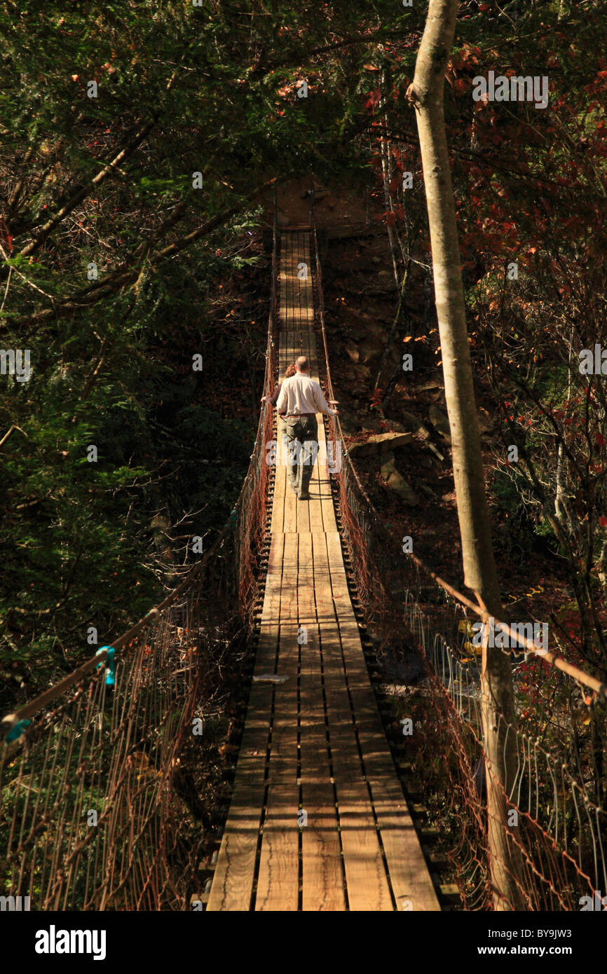 Swinging Bridge Stock Photos Amp Swinging Bridge Stock