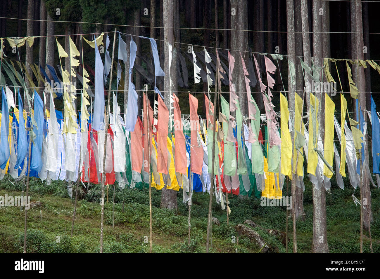 Buddhist prayer flags, raised for peace of the soul, flutter on a rural hillside in northeast India - Stock Image