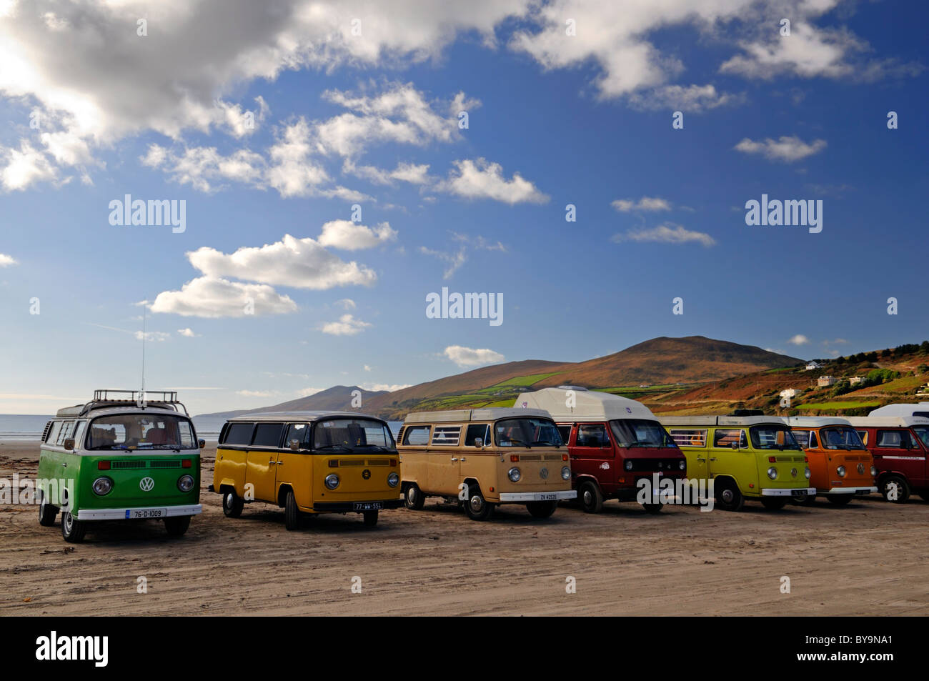 0edd729f90 line row of Volkswagen beetle vans vintage retro transport surf surfing  culture Inch beach county kerry ireland motor club fan