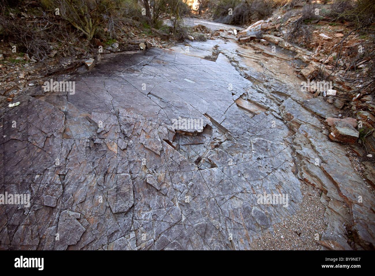 Ancient seabed, Tucson Mountains, Tucson, Arizona Stock Photo