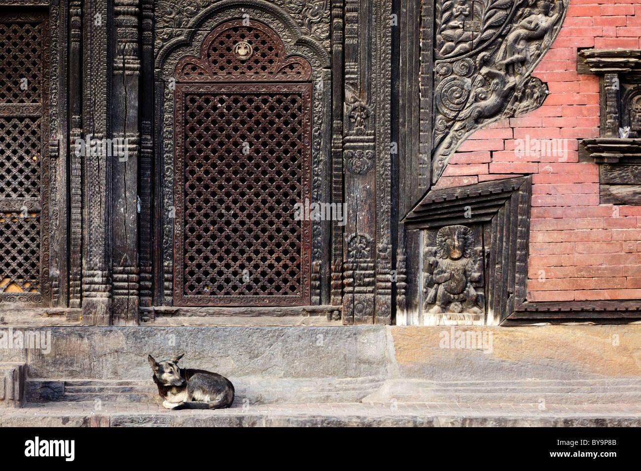 pashupatinath temple entrance with lying dog, Bhaktapur, Nepal Stock Photo