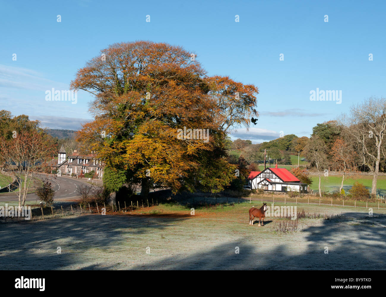 view of village of parton with red roofed village hall and Clydesdale horse in frosty weather - Stock Image