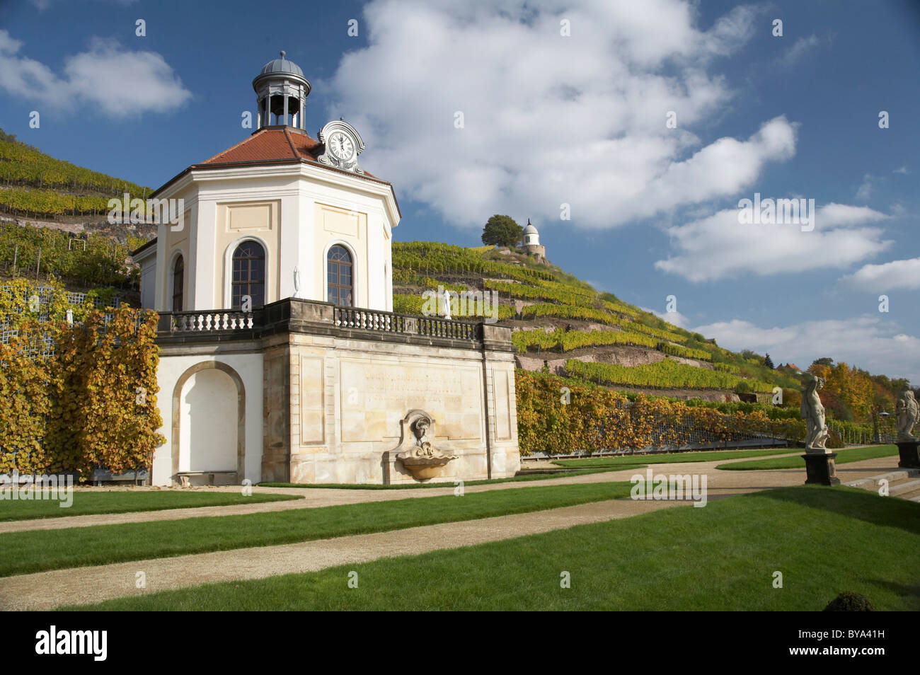 Belvedere of Wackerbarth Castle in the vineyard with Jacobstein, autumn, Radebeul, Saxony, Germany, Europe Stock Photo