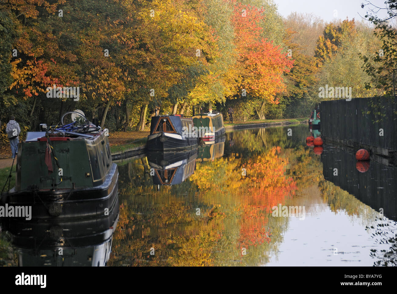 Autumn colour, Oxford Canal - Stock Image