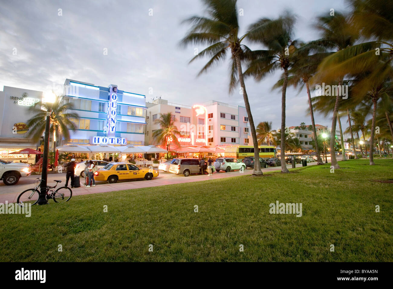 Illuminated Colony Hotel, South Beach, Ocean Drive, Miami, Florida, United States of America, USA - Stock Image