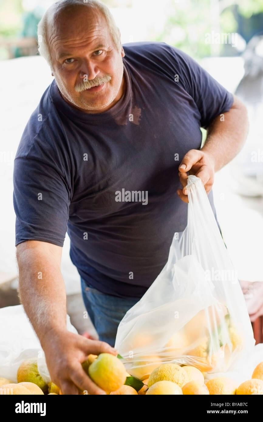 Man selling oranges - Stock Image