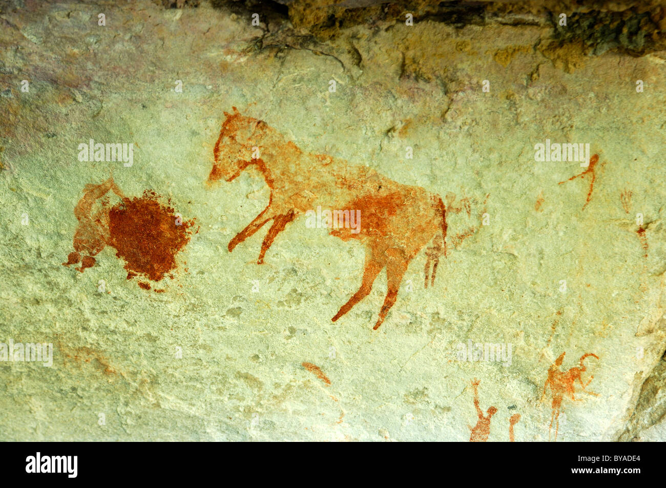 Prehistoric rock drawings of the Bushmen, probably representing an extinct quagga zebra, on the Sevilla Rock Art Stock Photo