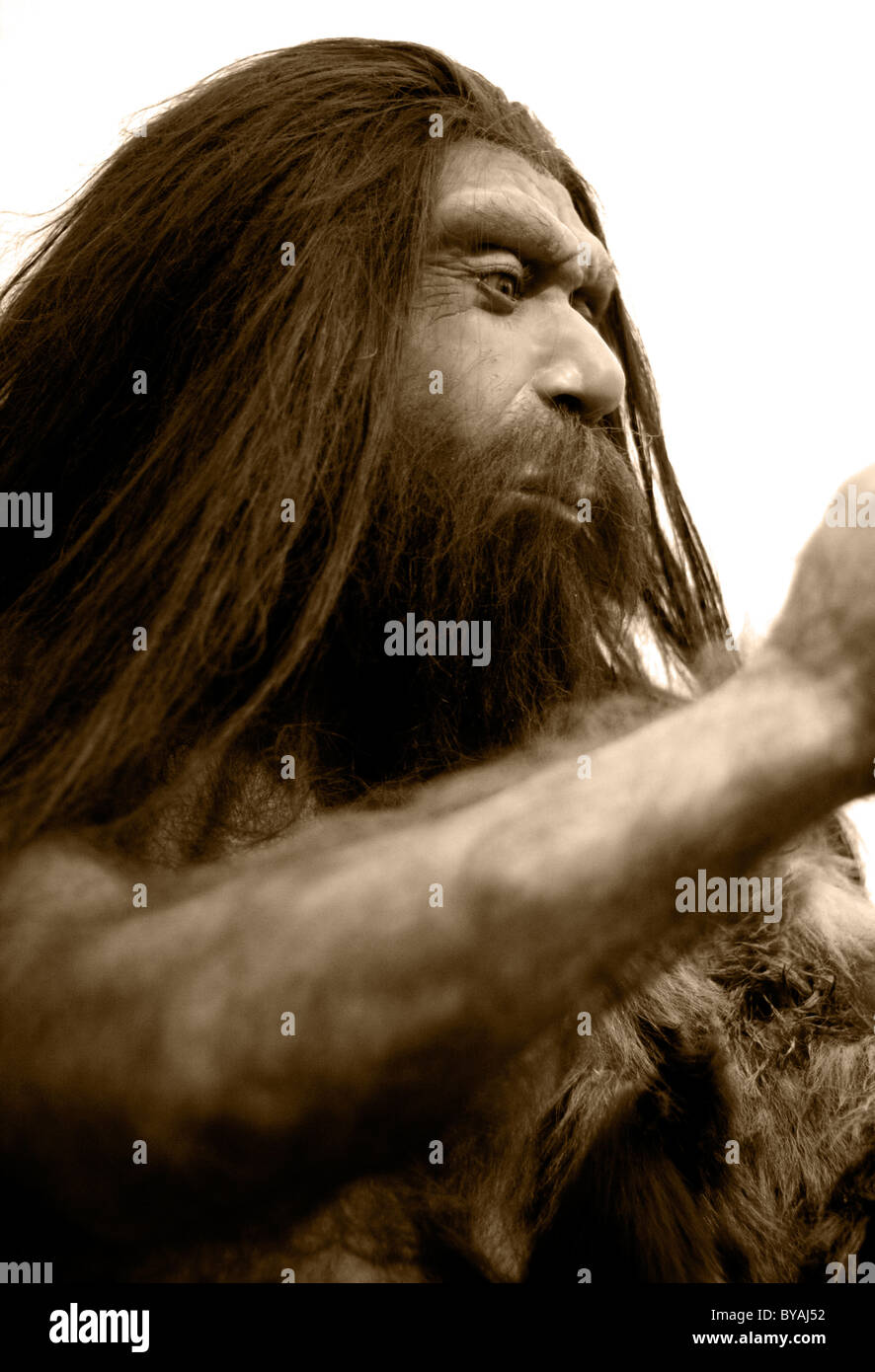 Caveman in a moseum. - Stock Image