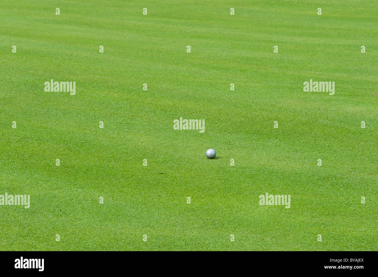 Silver golf ball on the green - Stock Image