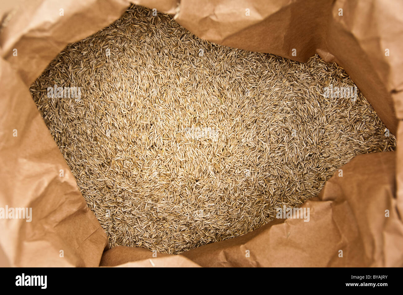close up of seed in bag - Stock Image