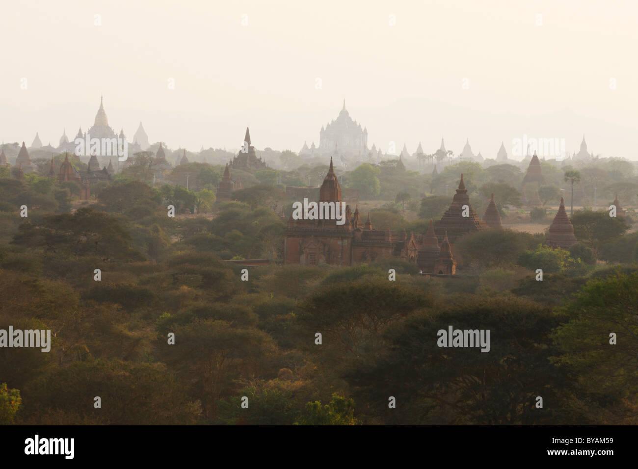 Burma, Birma, Myanmar, 20100223, Bagan - Stock Image